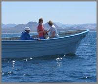 The Sea of Cortez is Eco-Tourism Paradise