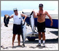 Yellow Tail Baja fishing fun