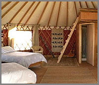 Baja Beachside Yurts for Baja whale watching