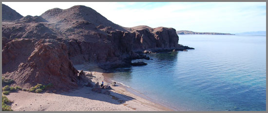 sea of cortez in the Midriff Island Region