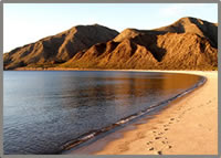 baja wellness retreat empty beach @ Las Animas Eco-Lodge