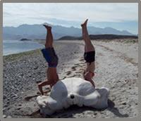 baja wellness retreats on the Sea of Cortez