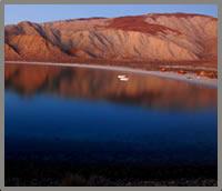 Baja wellness retreats at Las Animas Eco-Lodge
