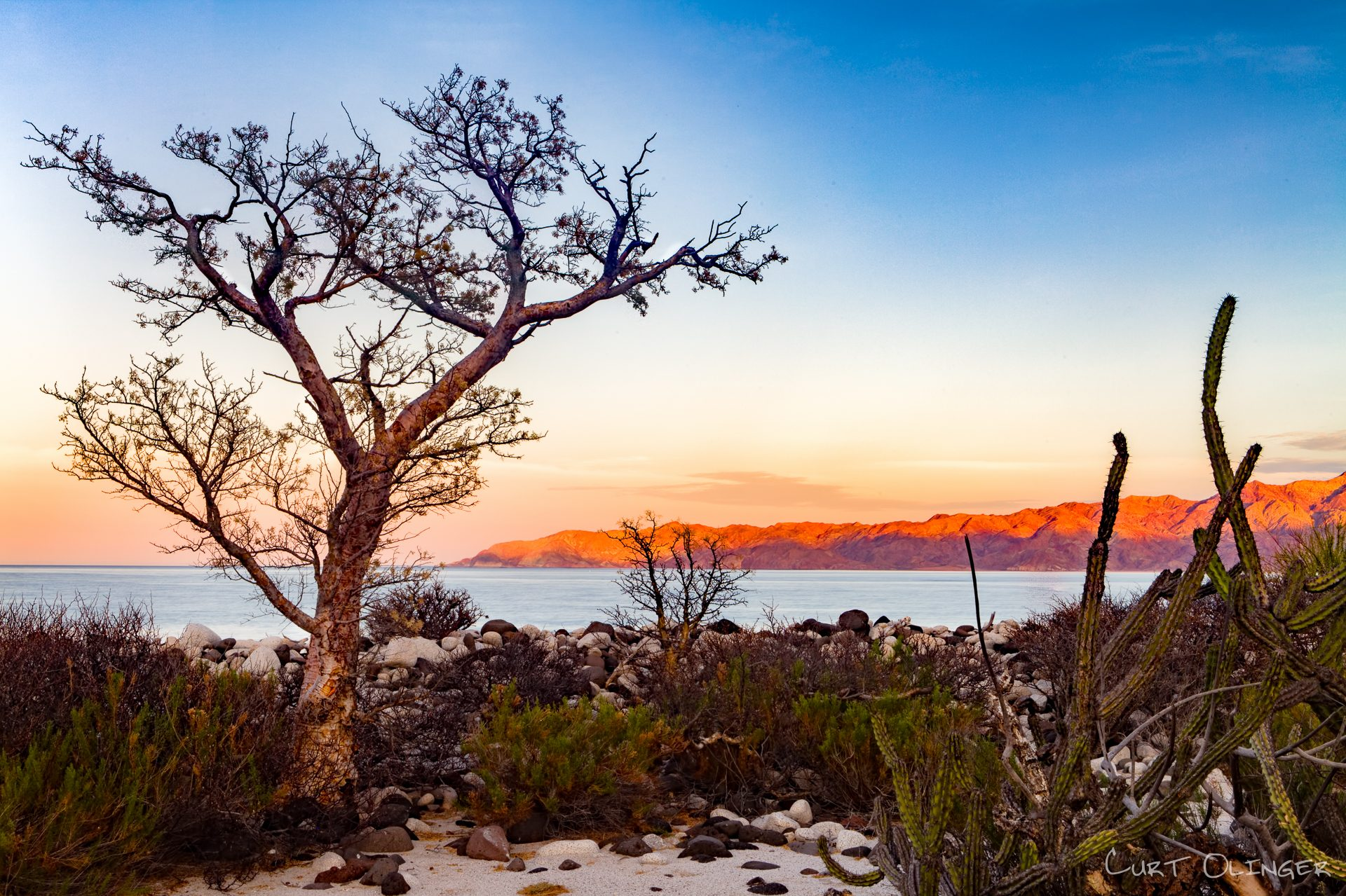 Baja adventure travel - Baja Nature Photography Tours